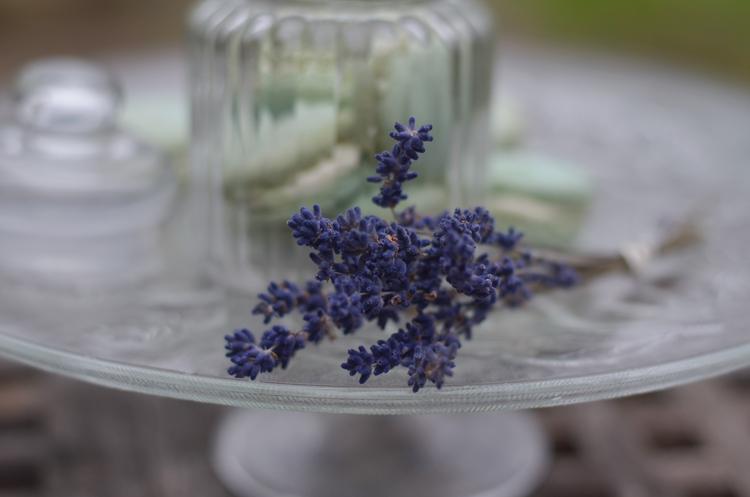 Rezept: Macarons mit Vanille