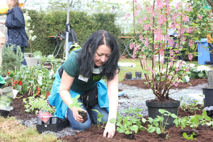 garden-queen