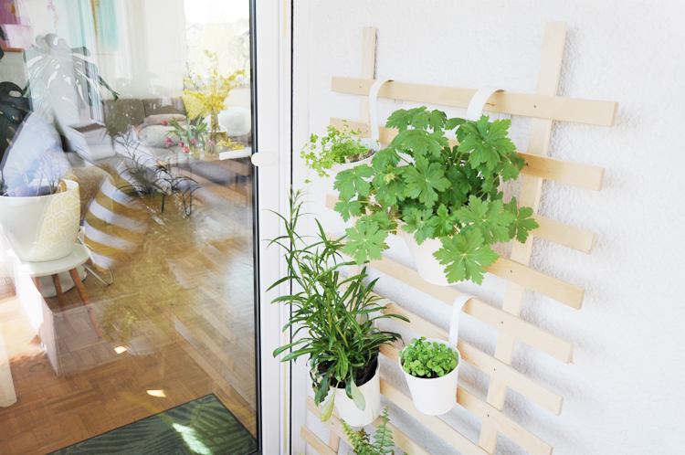 diy so baut ihr eine rankhilfe aus holz selber bonny. Black Bedroom Furniture Sets. Home Design Ideas