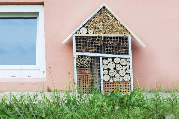 Bauanleitung: So baut ihr ein Insektenhotel – Bonny und Kleid